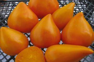 Описание сорта томата Оранжевая клубника и его урожайность