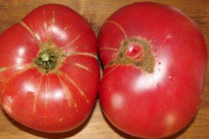 Что представляет собой томат Суперстейк, описание и выращивание
