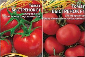 Описание и характеристика сорта томата Быстренок f1, его выращивание