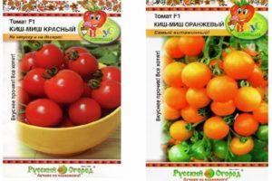 Описание томата Киш-миш и его характеристики, урожайность