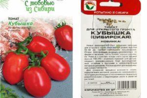 Описание томата Кубышка и его характеристики, урожайность
