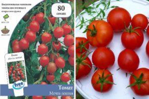 Описание томата Мечта лентяя, его характеристики и урожайность