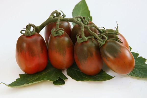 Черный томат