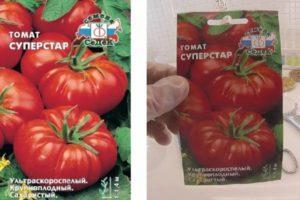 Характеристика и описание томата Суперстар, его преимущества