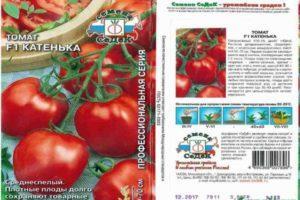 Описание томата Катенька F1, характеристика сорта и отзывы огородников