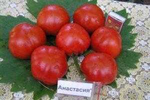 Описание томата Анастасия и выращивание гибридного сорта