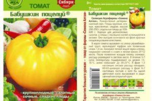 Описание томата Бабушкин поцелуй и рекомендации по выращиванию растения