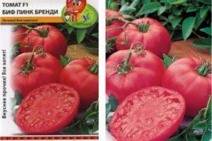 Описание томата и правила выращивания Биф пинк бренди