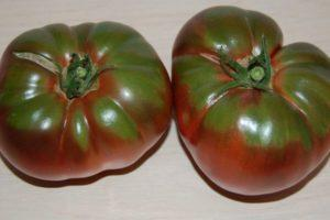 Описание томата серии Брендивайн черный и агротехника выращивания сорта