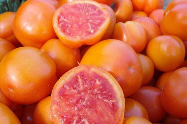 Помидоры Грейпфрут