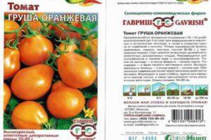 Описание и агротехника выращивания томата Груша оранжевая