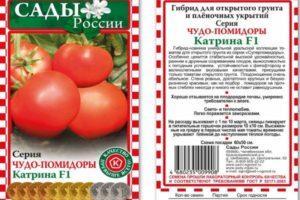 Описание томата Катрина f1, его характеристика, рекомендации по выращиванию