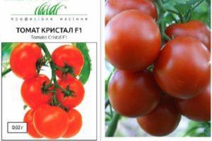 Описание томата Кристалл F1, выращивание и правила посадки