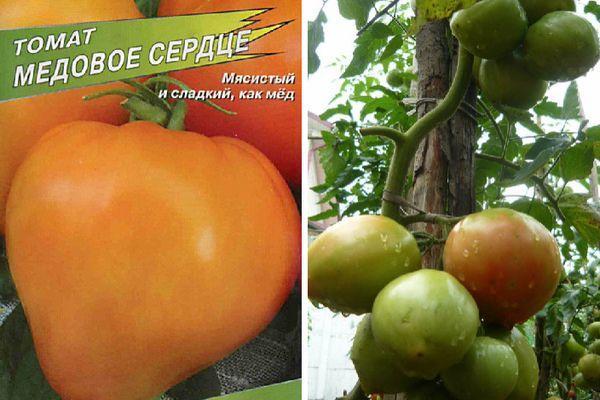 Описание помидоры