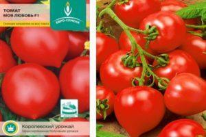 Специфика выращивания и описание томата сорта Моя любовь