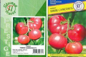 Характеристика и описание томата Пинк Самсон f1, выращивание и правила посадки
