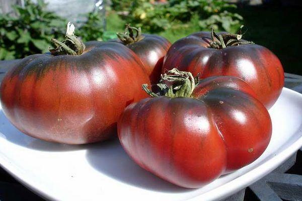 Темнокожие помидоры