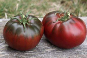 Описание томата Поль Робсон и правила выращивания