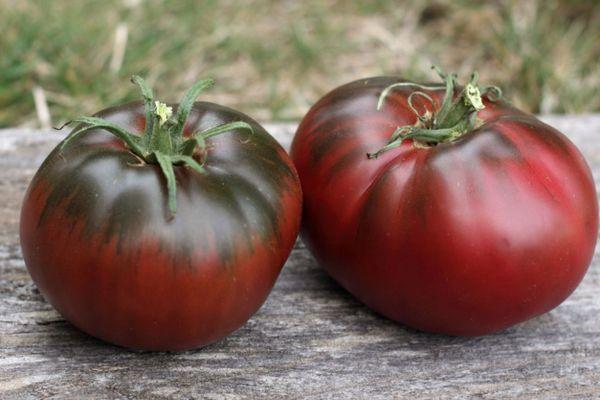 Темнокожие томаты