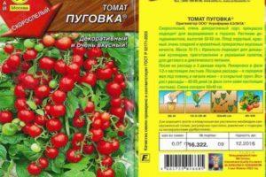 Описание томата Пуговка и его характеристики, скороспелость