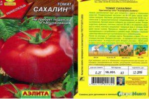 Описание томата Сахалин: особенности выращивания, посадка и уход
