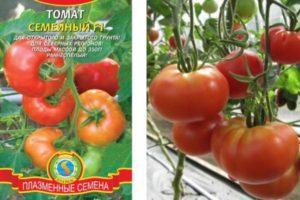Описание томата Семейный F1 и агротехника выращивания гибридного сорта