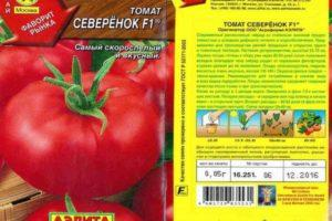 Описание томата Северенок: его характеристика, выращивание и уход