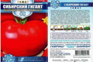 Описание томата Сибирский гигант и агротехника культивирования растения