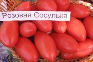 Описание и урожайность томата Сосулька Розовая с отзывами