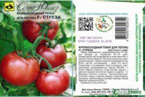 Специфика выращивания и описание сорта томата Стреза f1