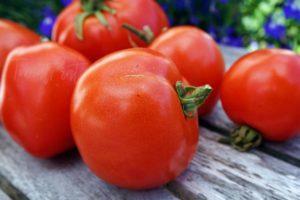 Описание томата Атоль и рекомендации по выращиванию сорта