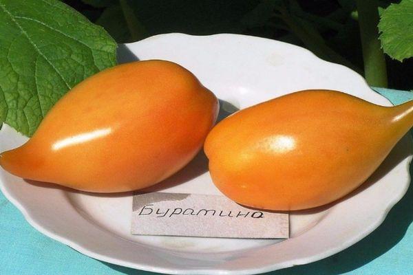 Желтые помидоры