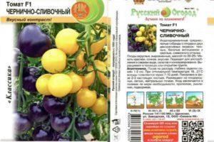 Описание томата Чернично-сливочный и правила выращивания гибрида