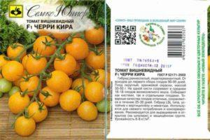 Описание томата черри Кира и выращивание гибрида рассадным методом
