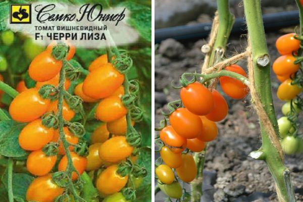 Оранжевые помидоры