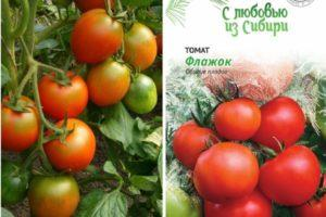 Описание томата Флажок и выращивание ультраскороспелого гибрида