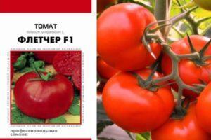 Описание томата Флетчер, общая характеристика плодов и методика выращивания сорта