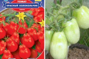 Описание томата Колокольчик и выращивание крепкой рассады