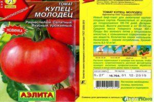 Характеристика томата Купец и выращивание гибридного сорта