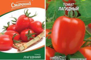 Описание томата Лагидный, культивирование и выращивание сорта