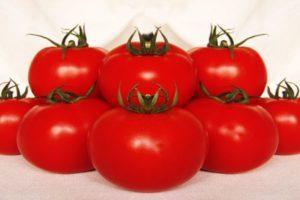 Описание гибридного томата Малика и разведение рассадным методом