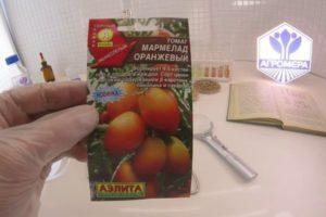 Краткое описание томата Мармелад оранжевый, выращивание и борьба с вредителями