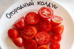 Описание и характеристика сорта томата Огородный колдун, урожайность и уход