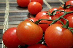 Описание гибридного томата Петергоф и характеристика плодов
