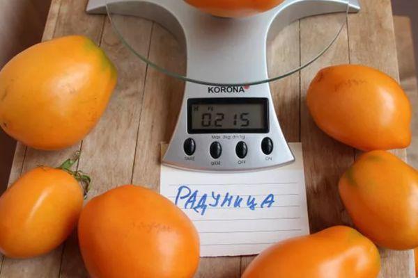 Весы и помидоры