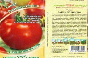Характеристика раннеспелого томата Райское яблоко и агротехника выращивания