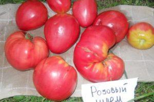 Описание универсального томата Розовый царь и методика выращивания сорта