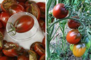 Описание вкусного томата Слива черная и агротехника выращивания