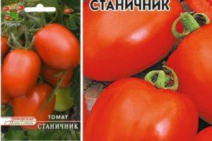 Характеристика и описание сорта томата Станичник, выращивание на участке