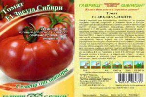 Характеристика томата Звезда Сибири f1, преимущества гибрида и агротехника культивирования